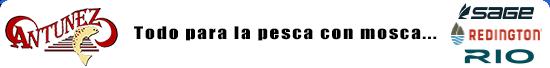 cabecera_boletin_