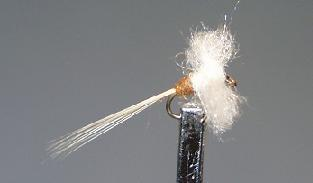 Trout Fly S32
