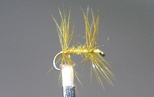 Trout Fly S33