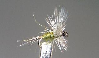 Dry Fly S72