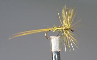 Dry Fly S14