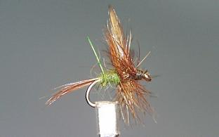 Dry Fly S17