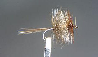 Dry Fly S15