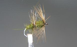 Dry Fly S48