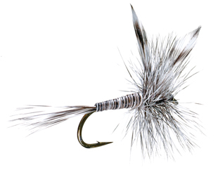 Dry Fly S129